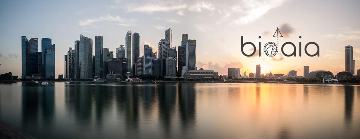panoramica de singapur